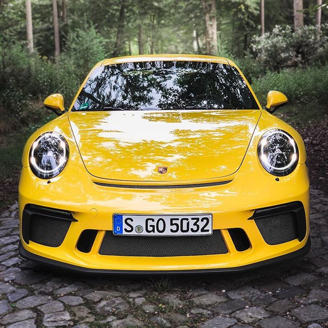GT3 in Forest🌲…not a natural habitat of this animal but boy does it look amazing‼️ @porsche_newsroom #porsche #porsche911 #porsche911gt3 #911gt3 #991gt3 #porsche991gt3 #automanntv #yellow